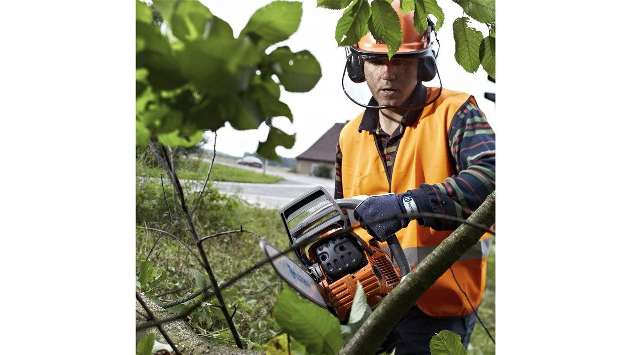 Guide your chainsaw to a clean, effective cut every time with these tips