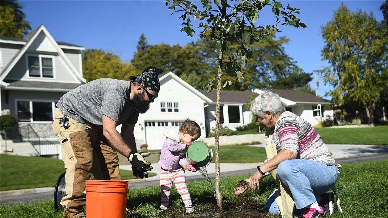 5 Tips for Planting and Caring for Trees this Arbor Day