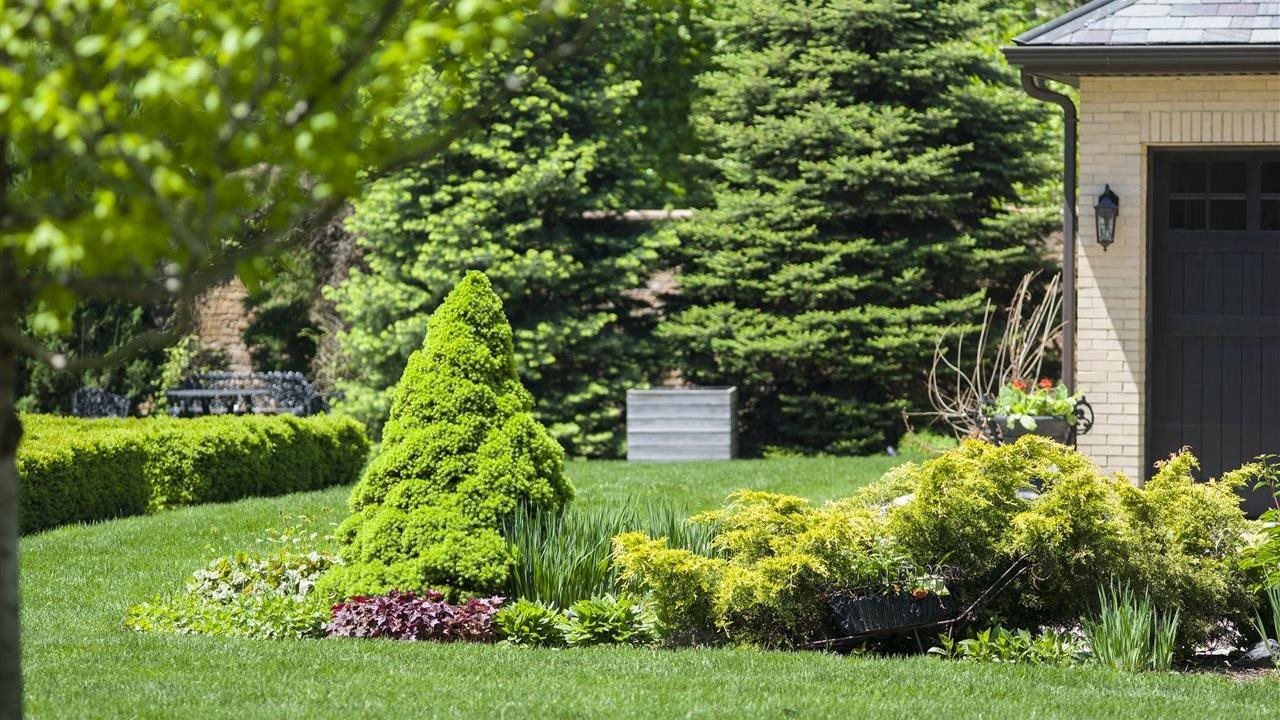 5 steps to a healthy spring lawn
