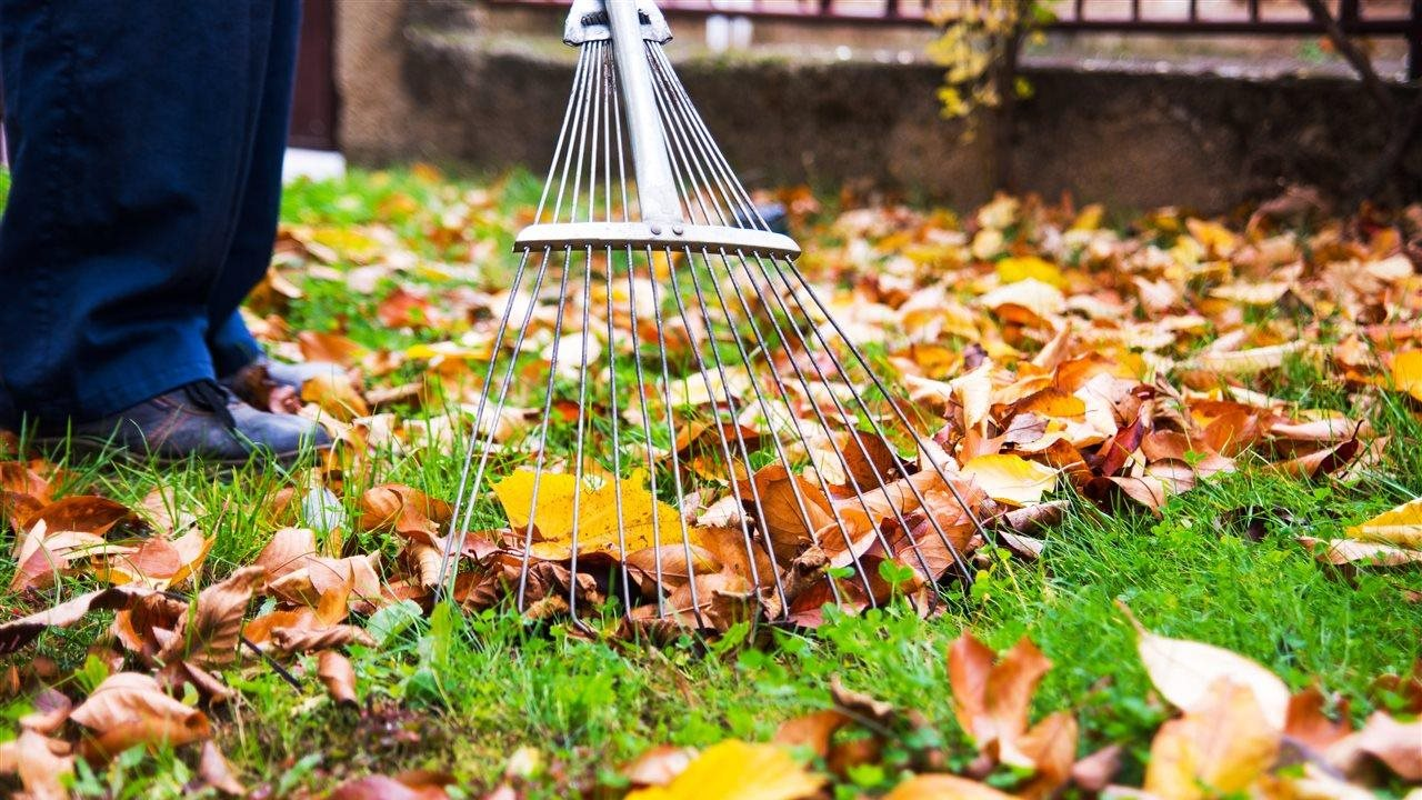 10 to-dos for home and yard winterization
