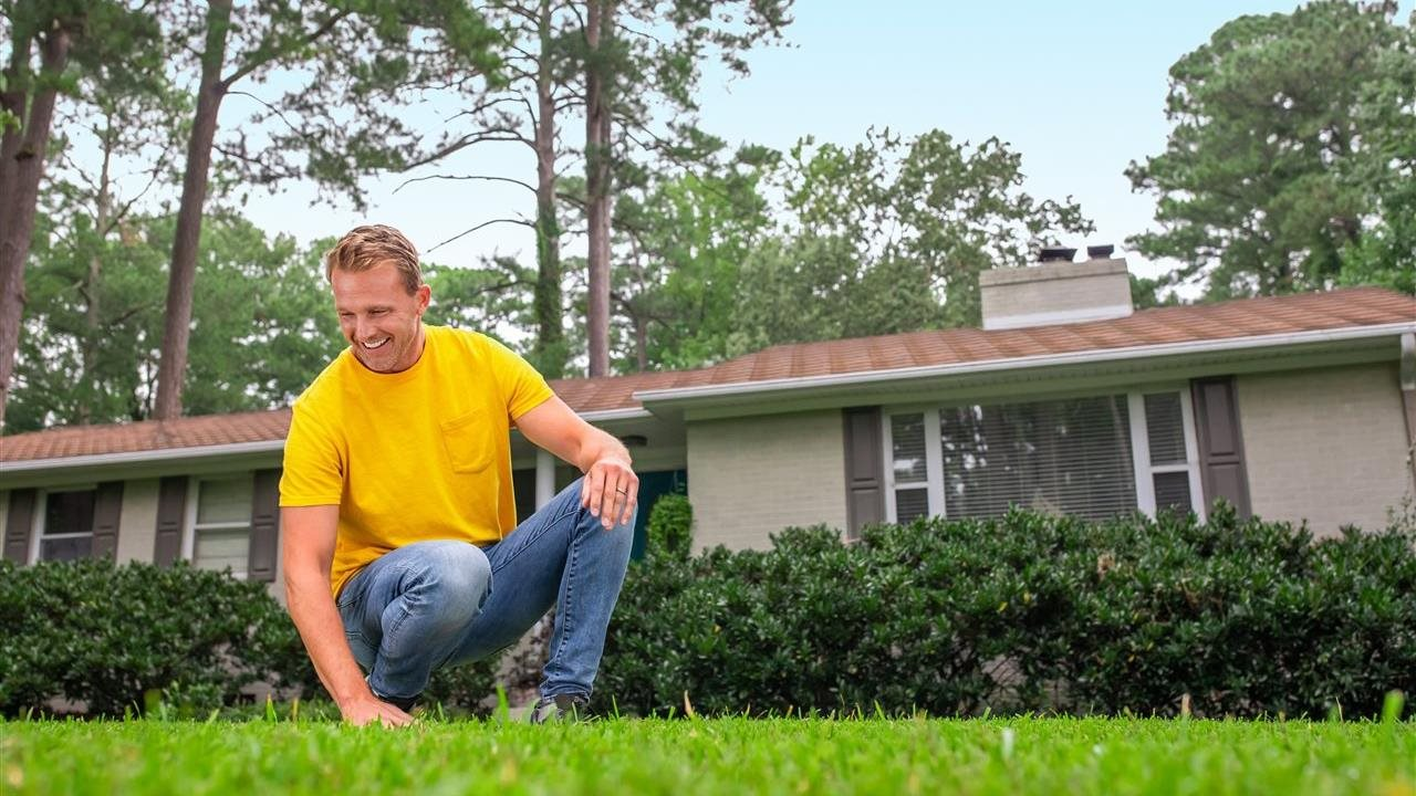 Spring awakening: 5 expert tips to renew your lawn
